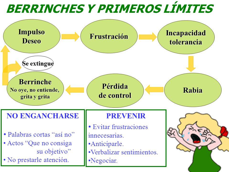 BERRINCHES Y PRIMEROS LÍMITES