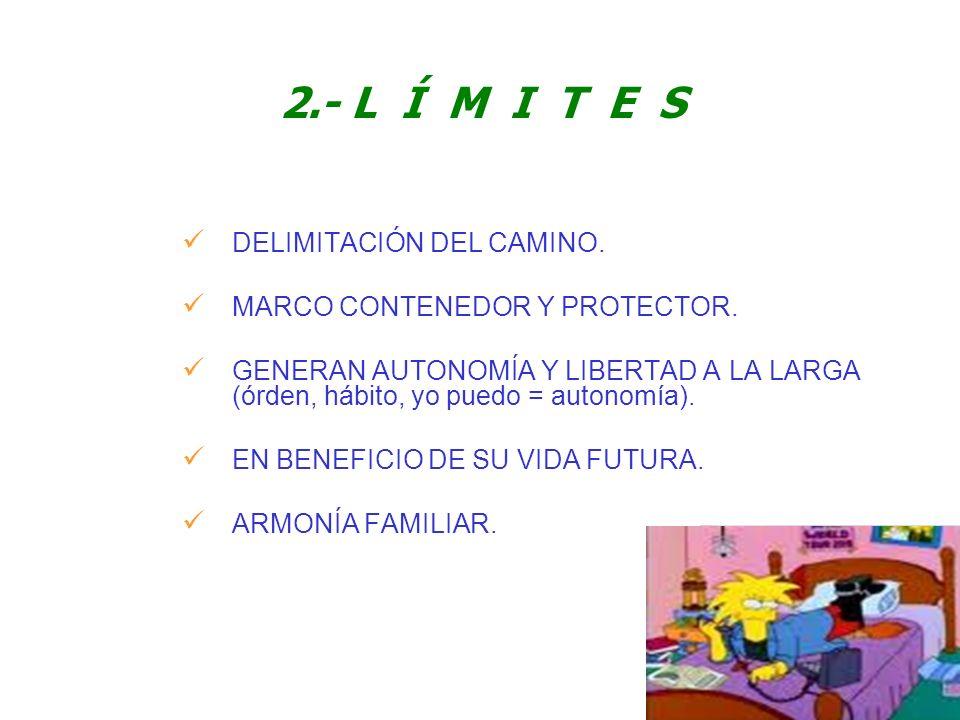 2.- L Í M I T E S DELIMITACIÓN DEL CAMINO.
