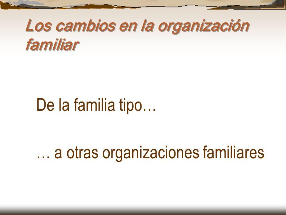 Los cambios en la organización familiar