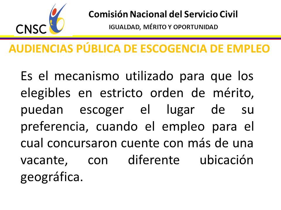 AUDIENCIAS PÚBLICA DE ESCOGENCIA DE EMPLEO