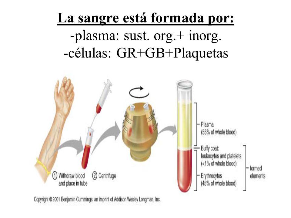 La sangre está formada por: -plasma: sust. org. + inorg