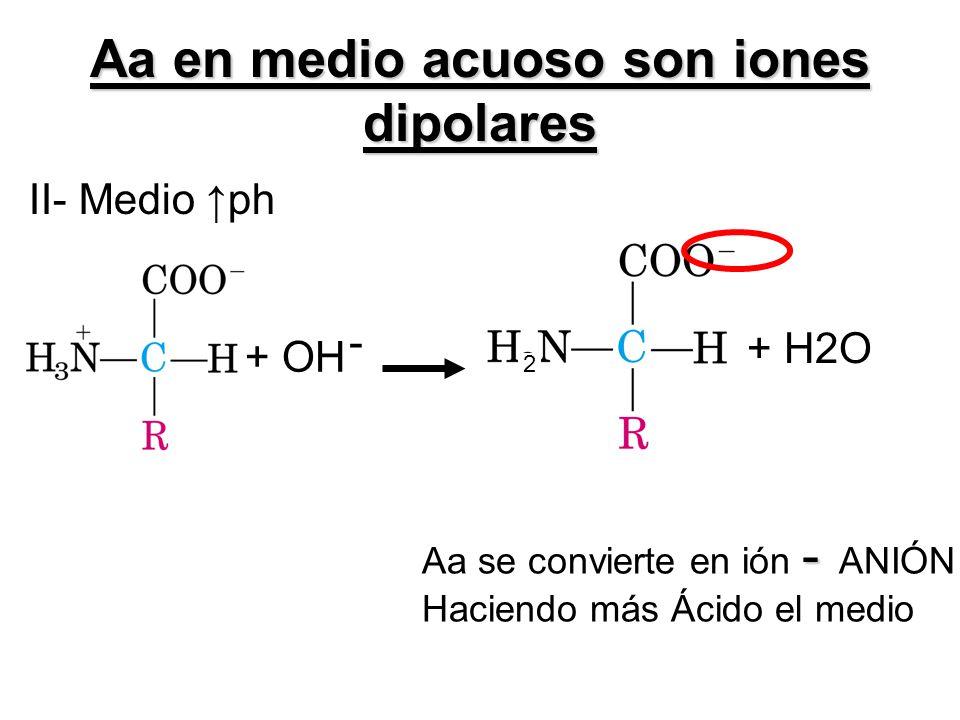 Aa en medio acuoso son iones dipolares