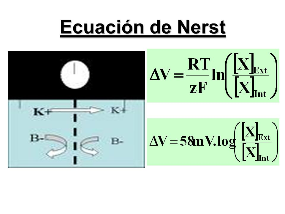 Ecuación de Nerst