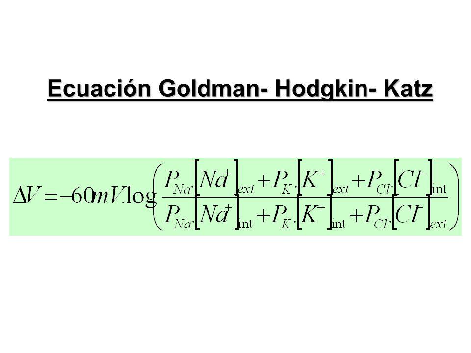 Ecuación Goldman- Hodgkin- Katz
