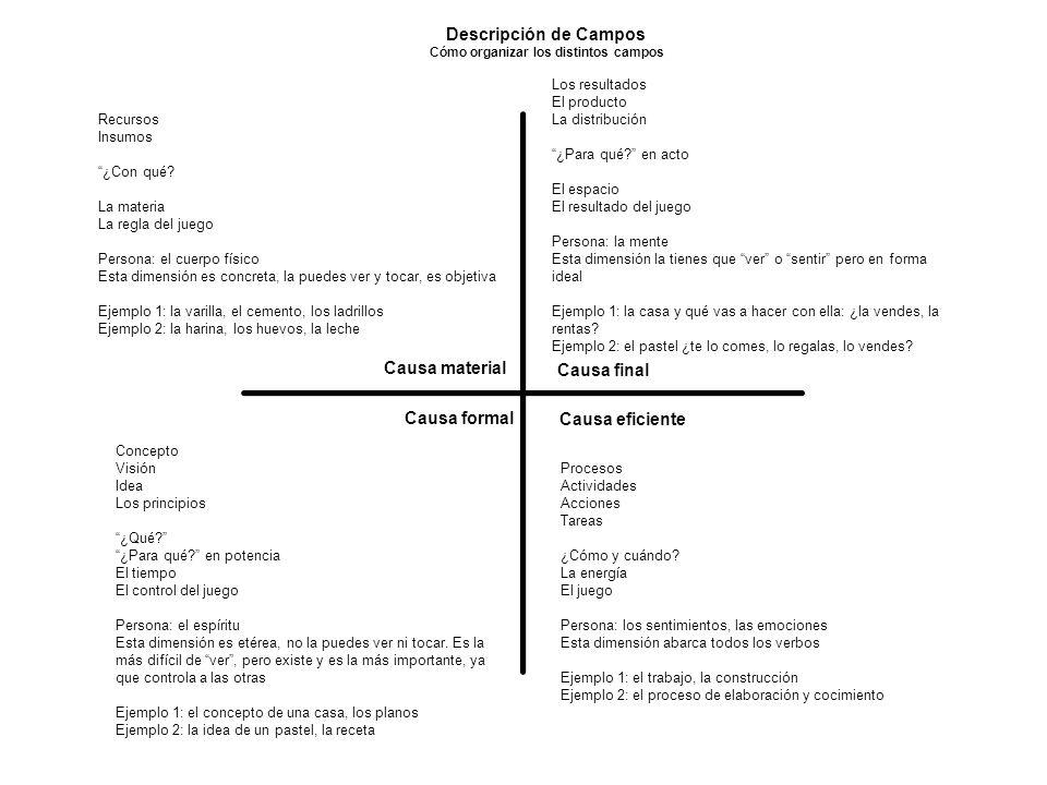 Cómo organizar los distintos campos