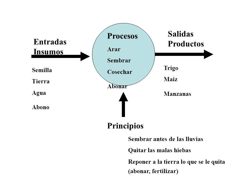 Salidas Procesos Productos Entradas Insumos Principios Arar Sembrar
