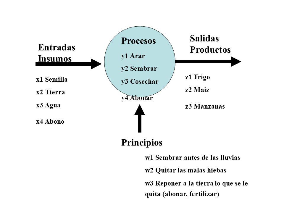Salidas Procesos Productos Entradas Insumos Principios y1 Arar