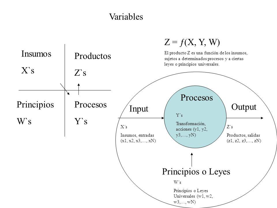 Variables Z = ƒ(X, Y, W) Insumos X`s Productos Z`s Procesos Principios