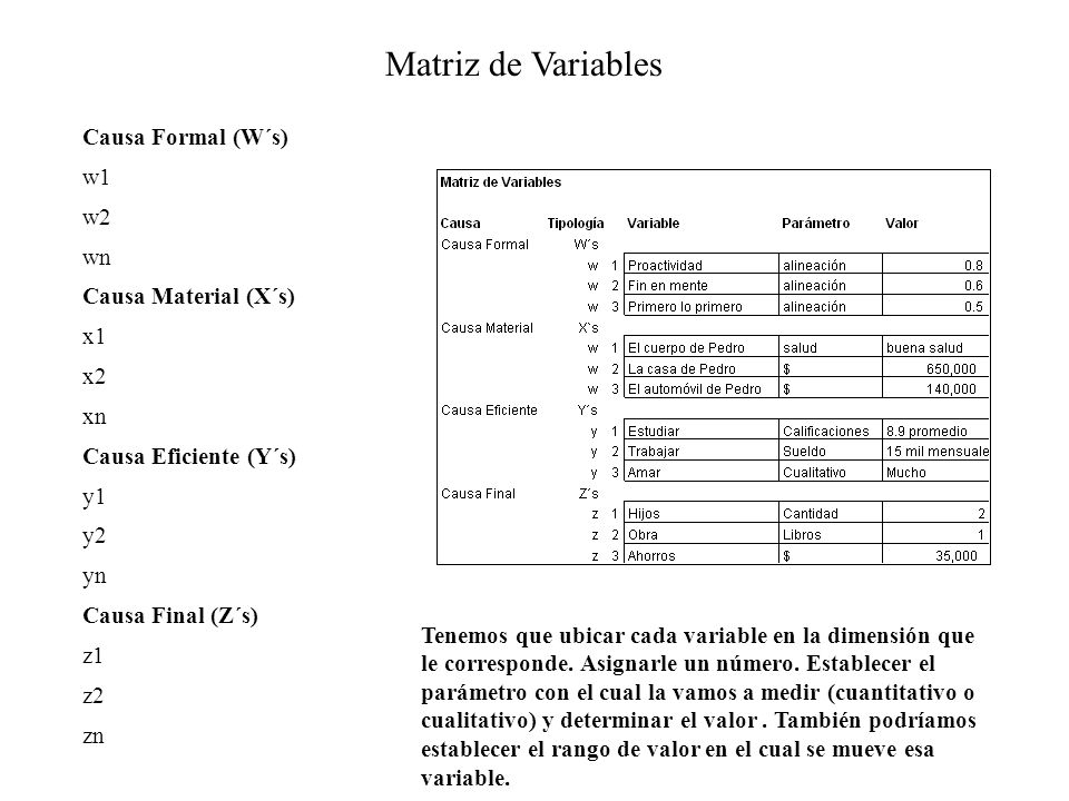 Matriz de Variables Causa Formal (W´s) w1 w2 wn Causa Material (X´s)