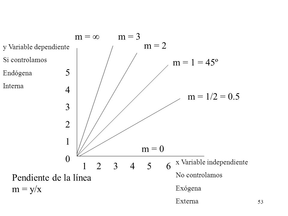 m = ∞ m = 3. m = 2. y Variable dependiente. Si controlamos. Endógena. Interna. m = 1 = 45º. 5.