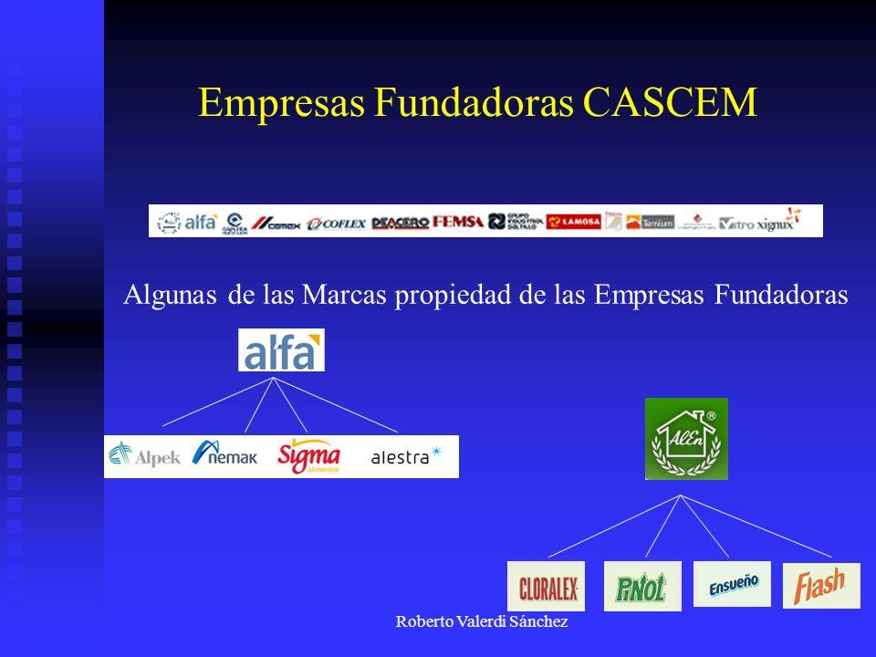 Empresas Fundadoras CASCEM