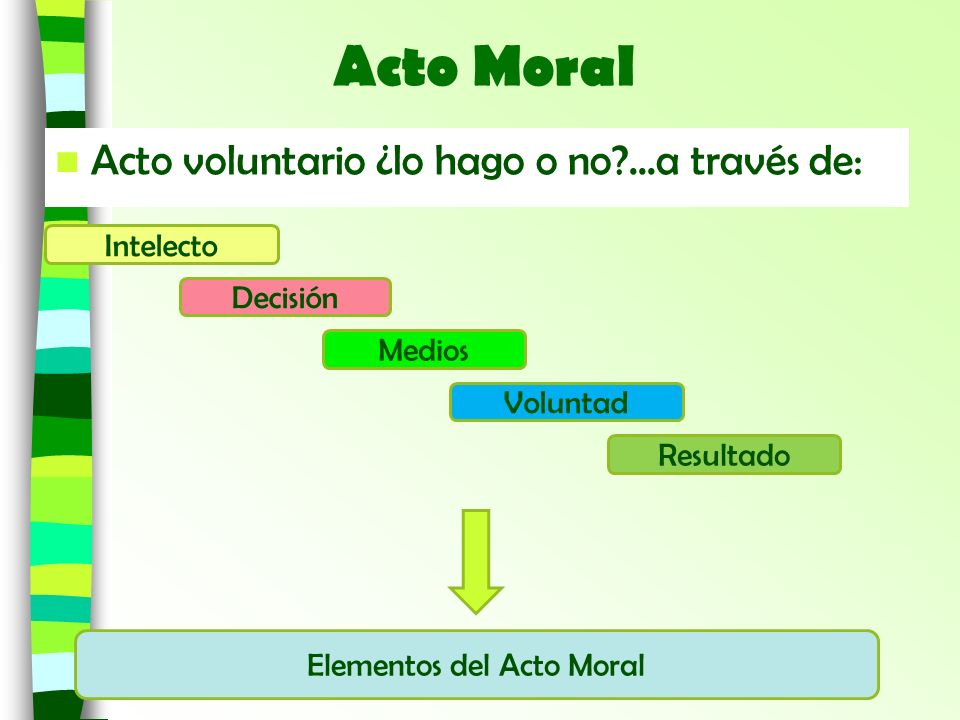 Elementos del Acto Moral