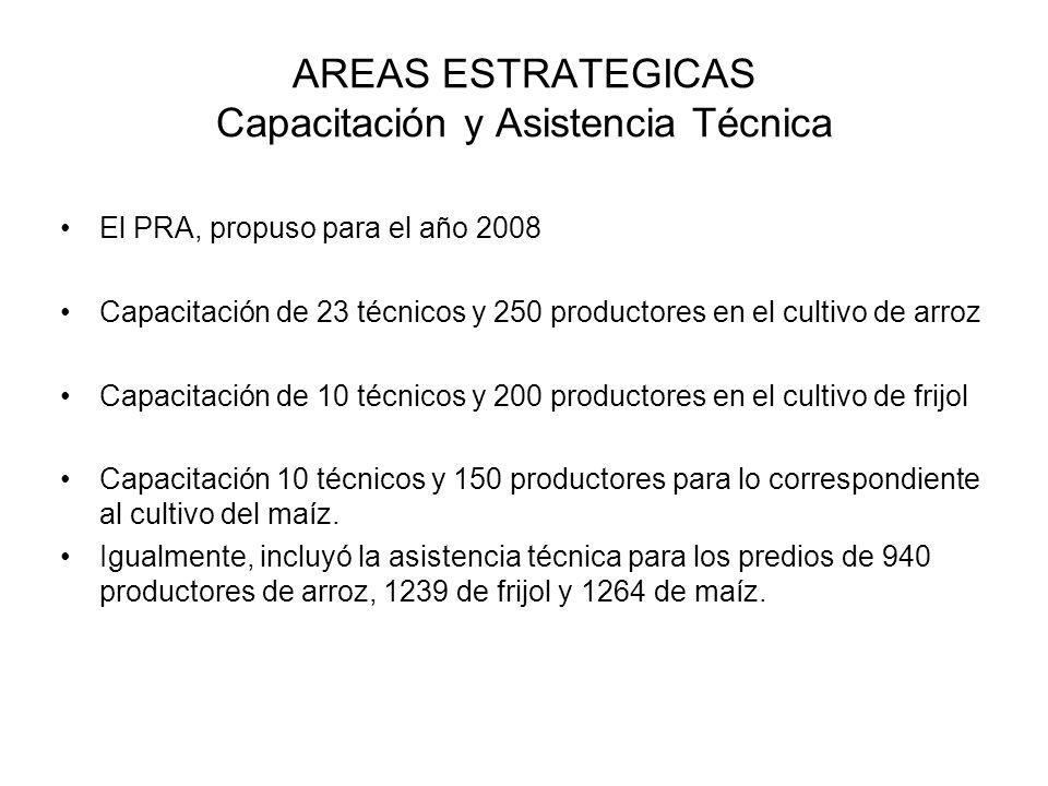 AREAS ESTRATEGICAS Capacitación y Asistencia Técnica