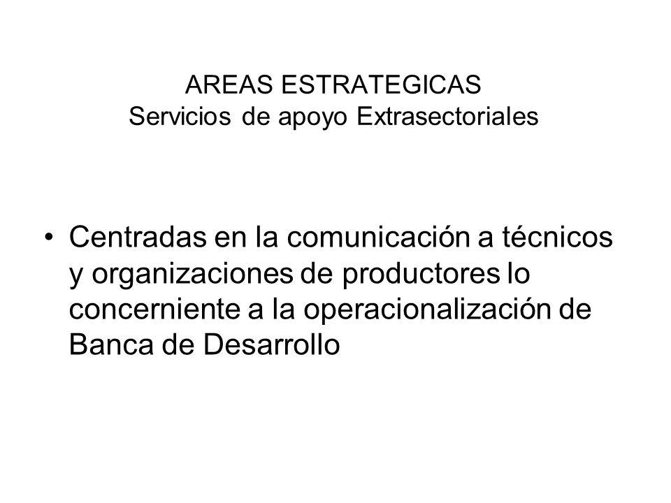 AREAS ESTRATEGICAS Servicios de apoyo Extrasectoriales