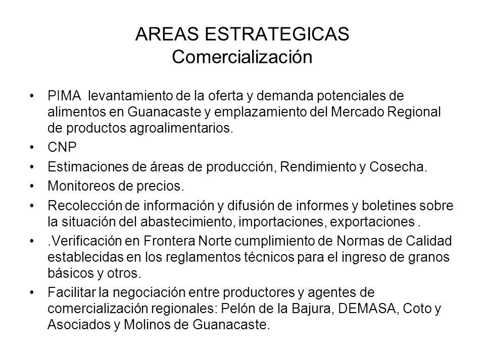AREAS ESTRATEGICAS Comercialización