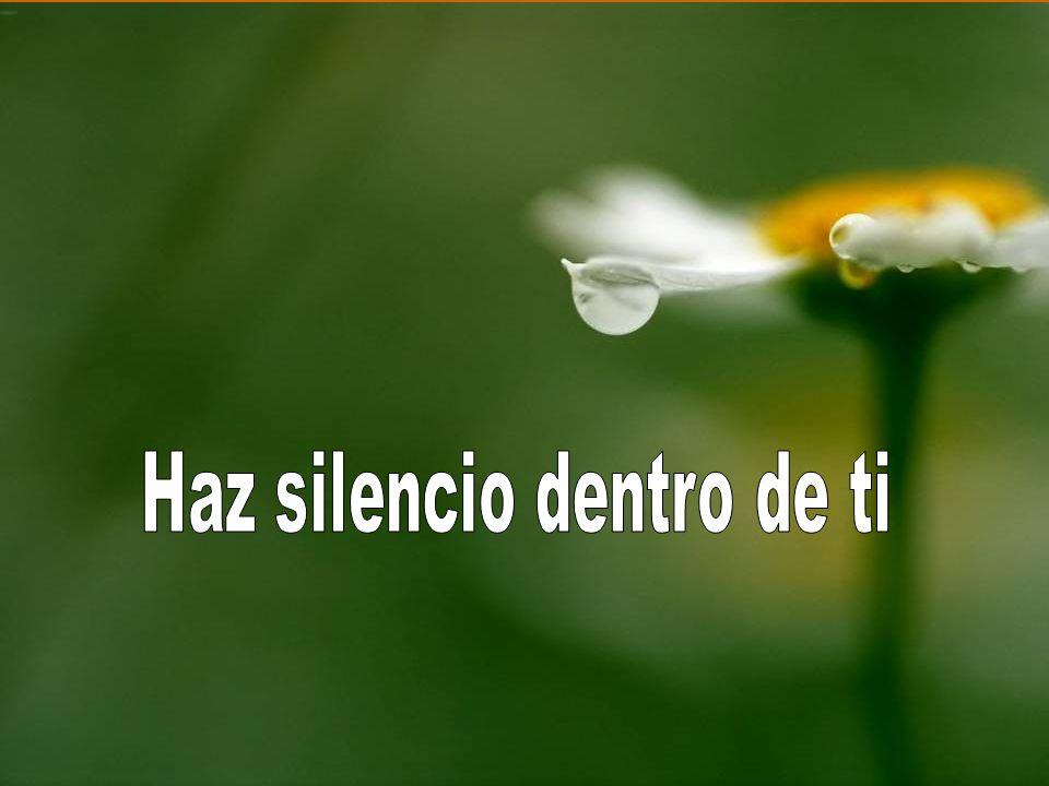 Haz silencio dentro de ti