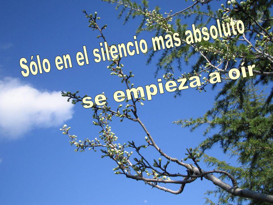 Sólo en el silencio más absoluto