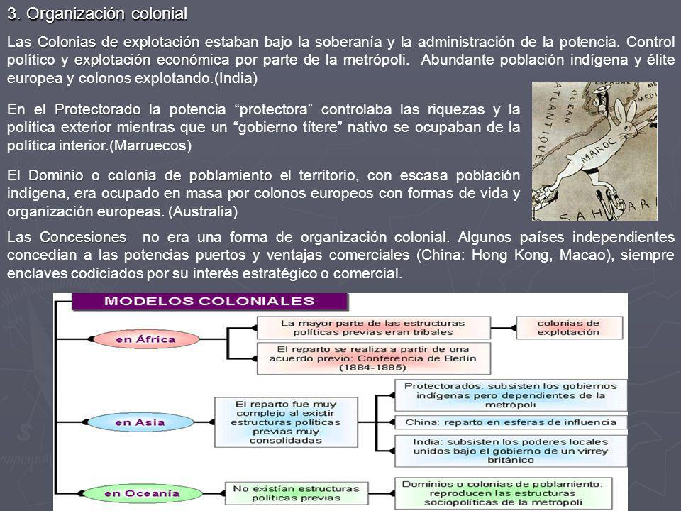 3. Organización colonial
