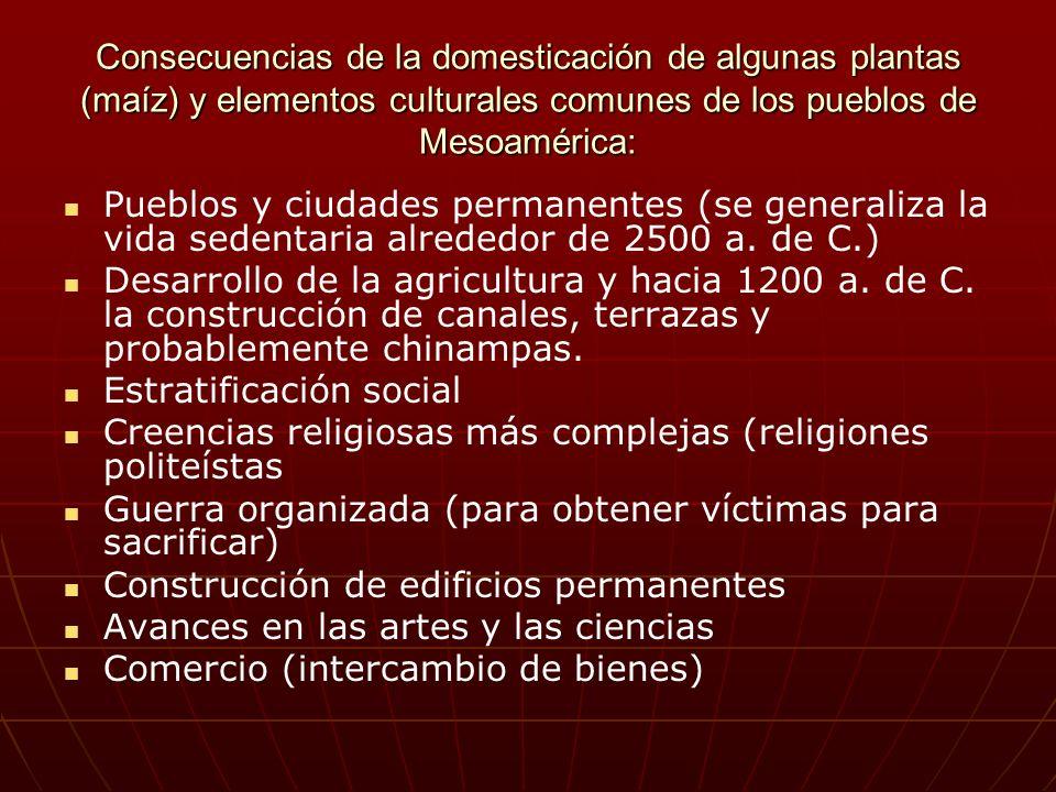 Consecuencias de la domesticación de algunas plantas (maíz) y elementos culturales comunes de los pueblos de Mesoamérica: