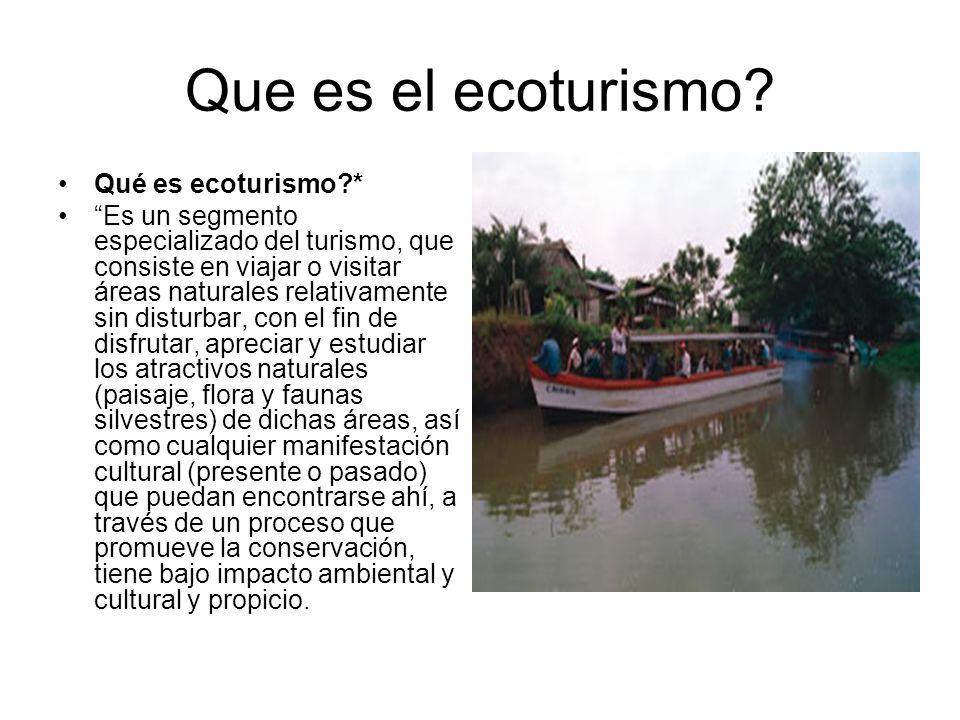 Que es el ecoturismo Qué es ecoturismo *