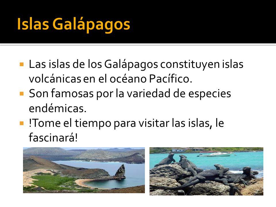 Islas Galápagos Las islas de los Galápagos constituyen islas volcánicas en el océano Pacífico. Son famosas por la variedad de especies endémicas.