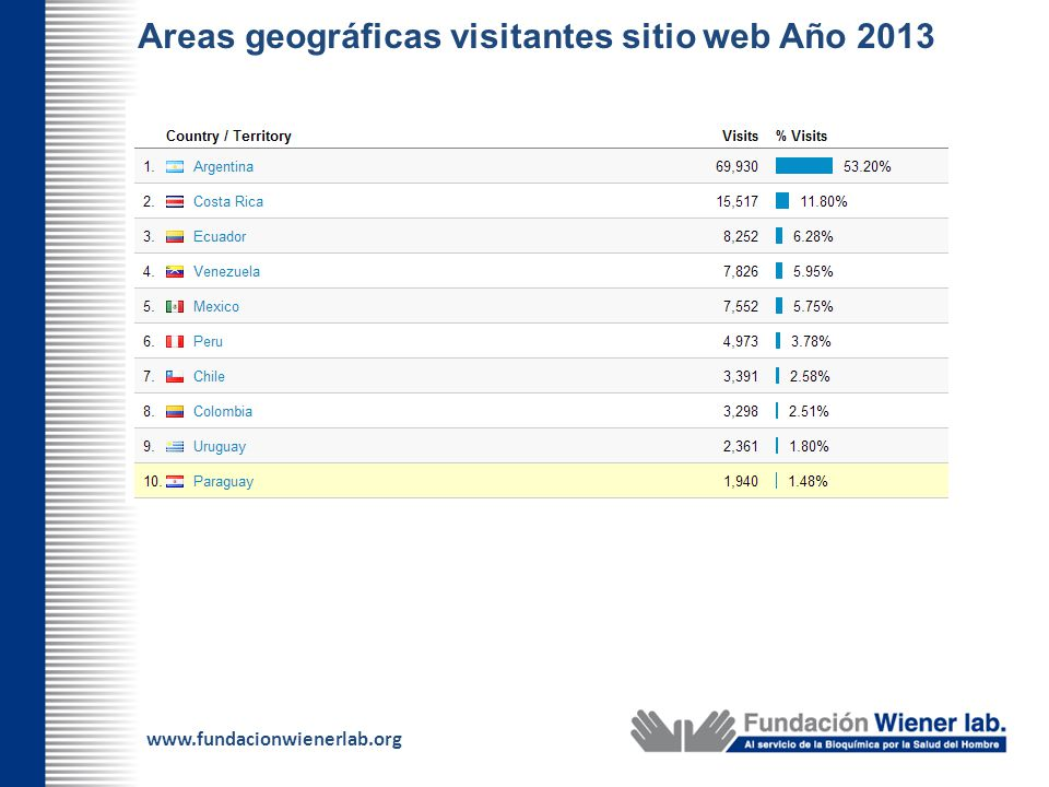 Areas geográficas visitantes sitio web Año 2013