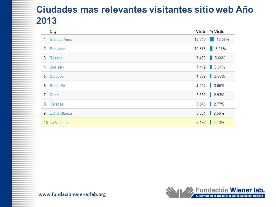 Ciudades mas relevantes visitantes sitio web Año 2013
