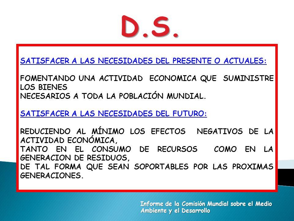 D.S. SATISFACER A LAS NECESIDADES DEL PRESENTE O ACTUALES: