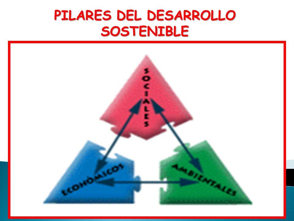 PILARES DEL DESARROLLO SOSTENIBLE