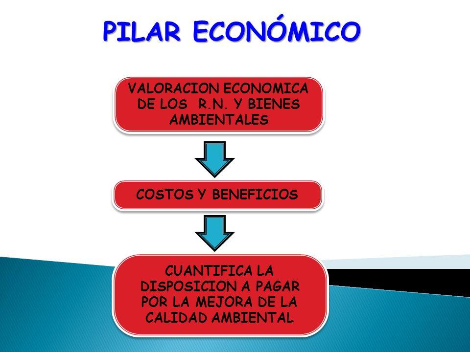 VALORACION ECONOMICA DE LOS R.N. Y BIENES AMBIENTALES