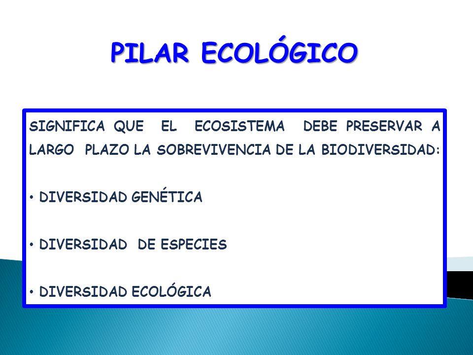 PILAR ECOLÓGICO SIGNIFICA QUE EL ECOSISTEMA DEBE PRESERVAR A LARGO PLAZO LA SOBREVIVENCIA DE LA BIODIVERSIDAD: