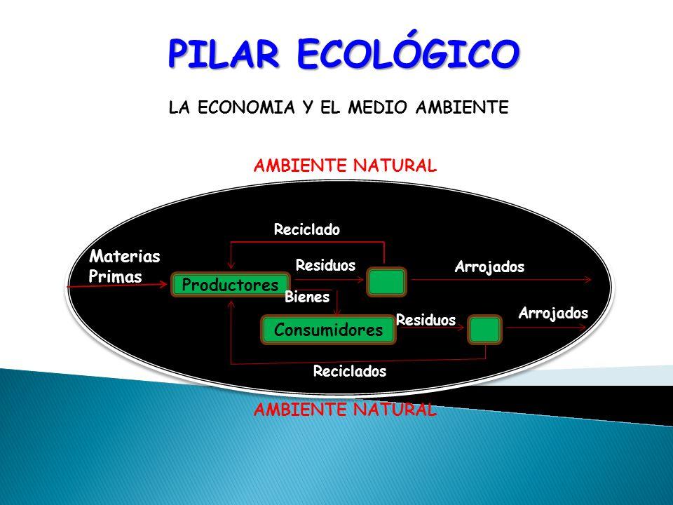PILAR ECOLÓGICO LA ECONOMIA Y EL MEDIO AMBIENTE AMBIENTE NATURAL