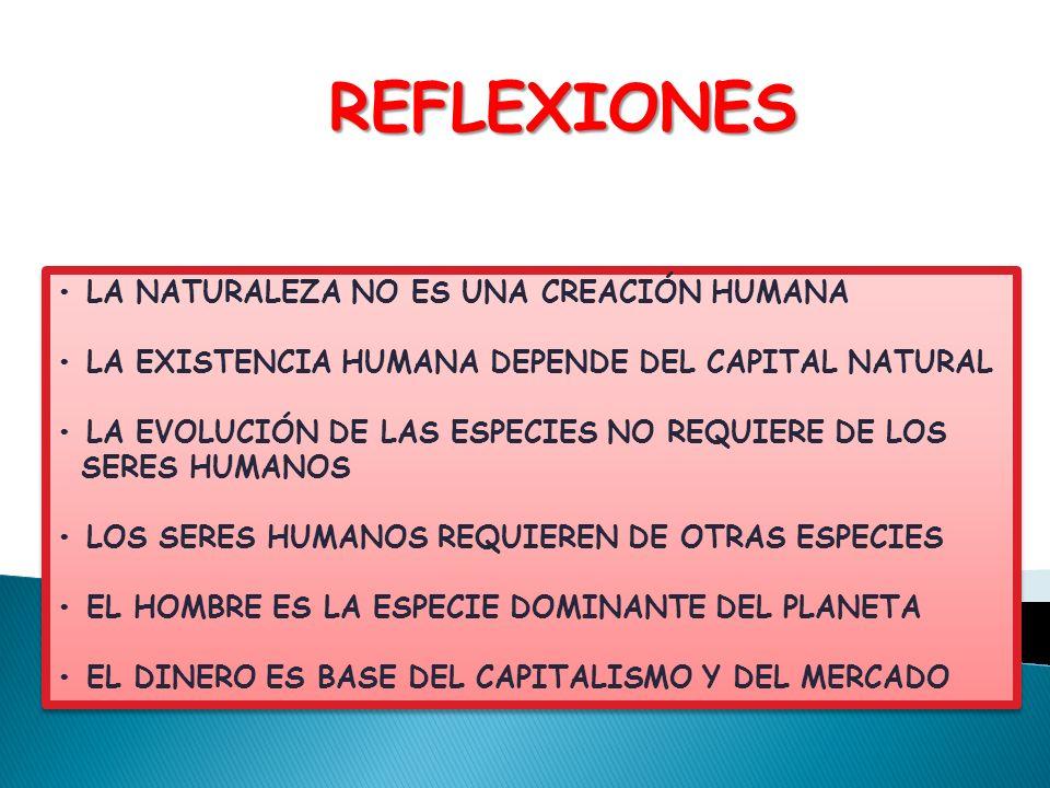 REFLEXIONES • LA NATURALEZA NO ES UNA CREACIÓN HUMANA