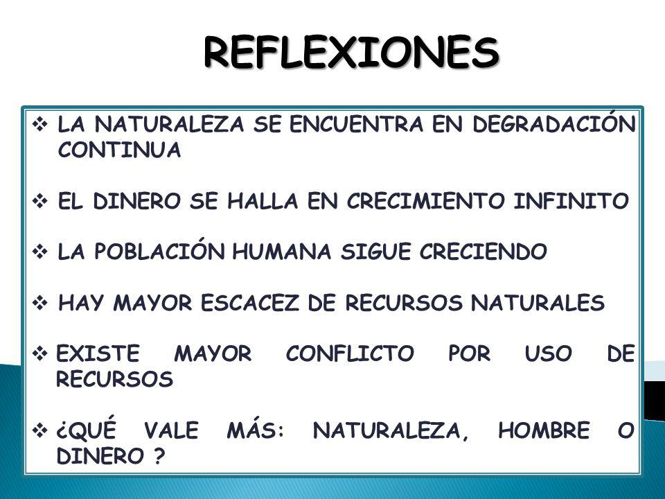REFLEXIONES LA NATURALEZA SE ENCUENTRA EN DEGRADACIÓN CONTINUA