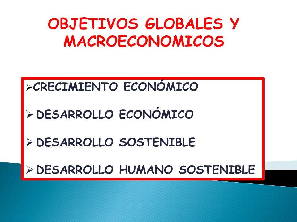 OBJETIVOS GLOBALES Y MACROECONOMICOS