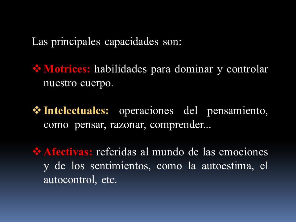 Las principales capacidades son: