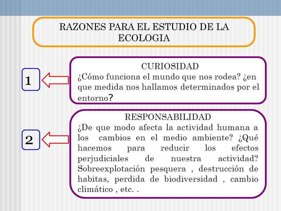 RAZONES PARA EL ESTUDIO DE LA ECOLOGIA