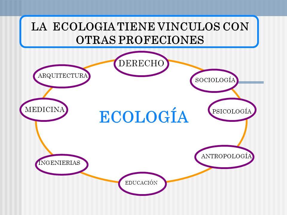 LA ECOLOGIA TIENE VINCULOS CON OTRAS PROFECIONES