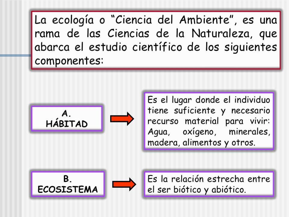 La ecología o Ciencia del Ambiente , es una rama de las Ciencias de la Naturaleza, que abarca el estudio científico de los siguientes componentes: