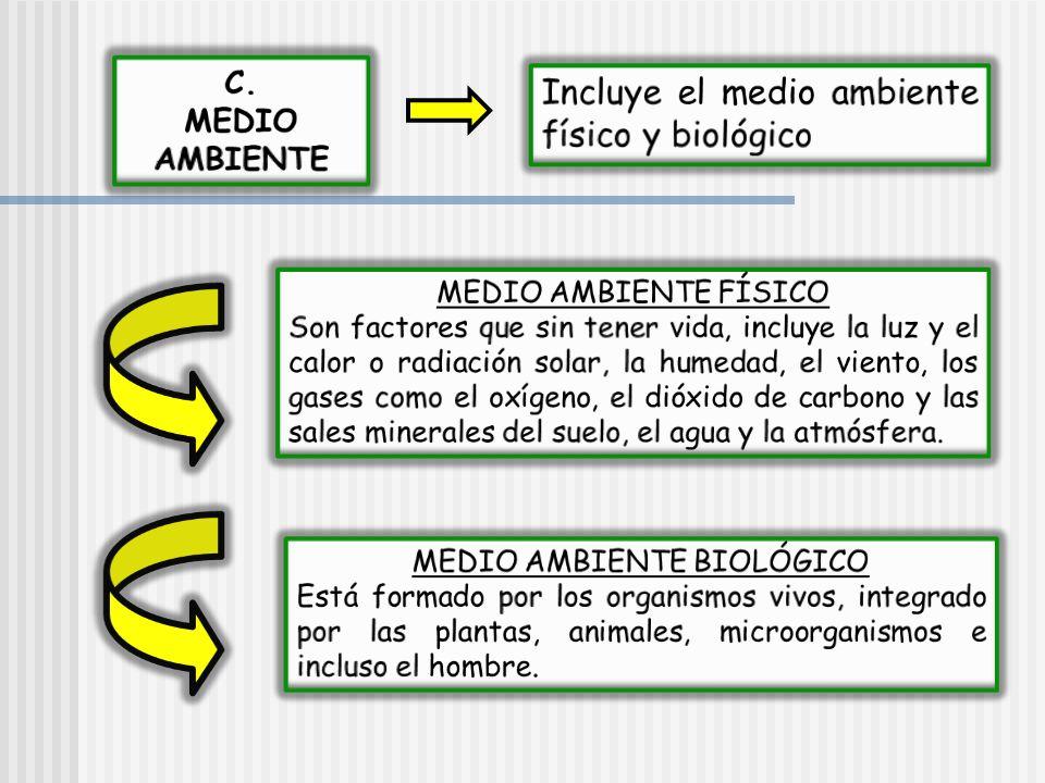 MEDIO AMBIENTE BIOLÓGICO