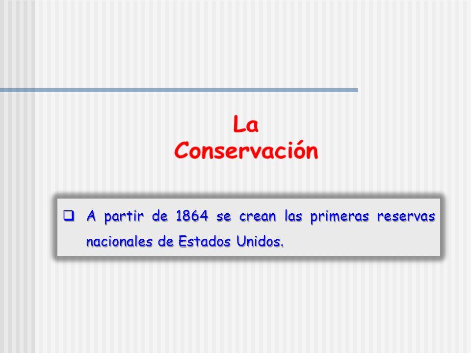 La Conservación A partir de 1864 se crean las primeras reservas nacionales de Estados Unidos.