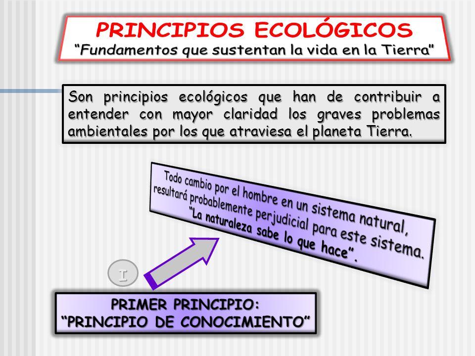 PRINCIPIOS ECOLÓGICOS PRINCIPIO DE CONOCIMIENTO
