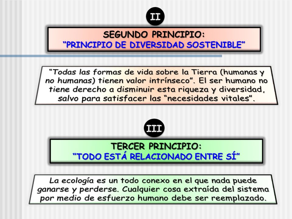 PRINCIPIO DE DIVERSIDAD SOSTENIBLE TODO ESTÁ RELACIONADO ENTRE SÍ