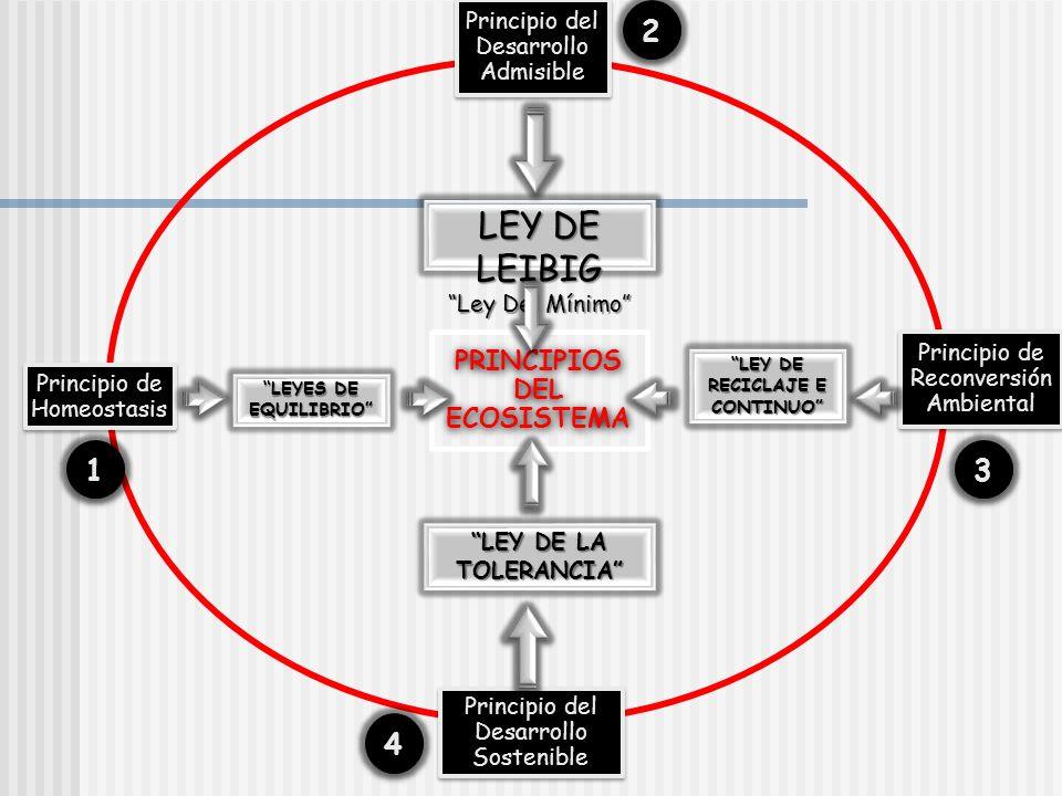 PRINCIPIOS DEL ECOSISTEMA LEY DE RECICLAJE E CONTINUO