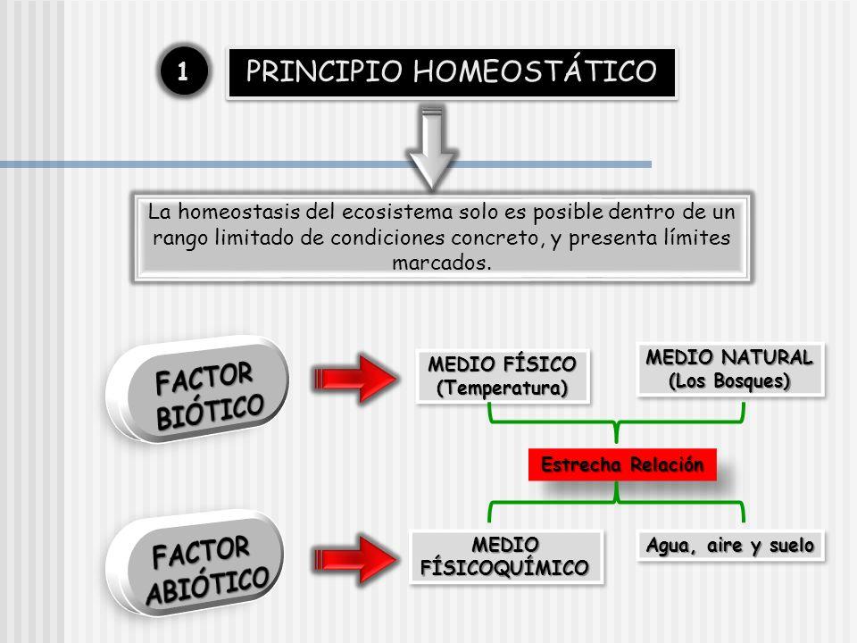 PRINCIPIO HOMEOSTÁTICO