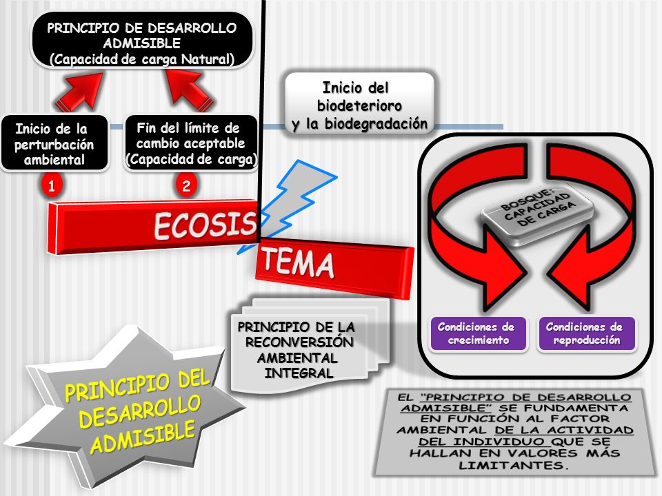 ECOSIS TEMA PRINCIPIO DEL DESARROLLO ADMISIBLE Inicio del biodeterioro