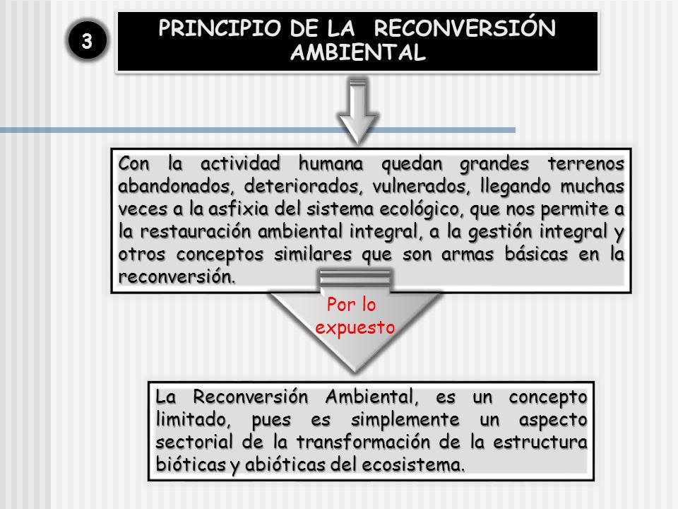 PRINCIPIO DE LA RECONVERSIÓN AMBIENTAL