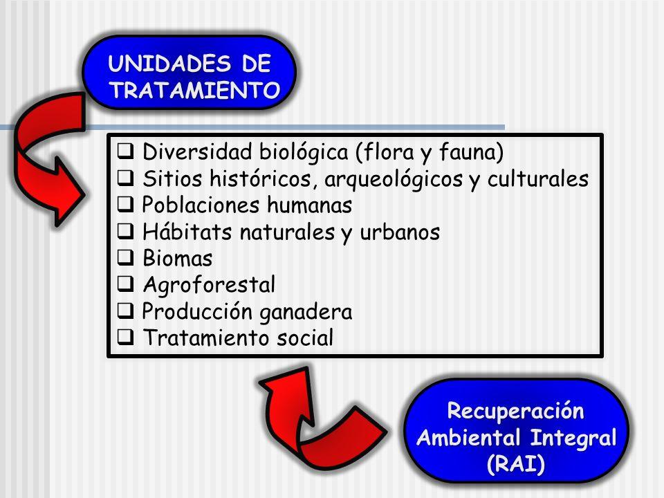 UNIDADES DE TRATAMIENTO. Diversidad biológica (flora y fauna) Sitios históricos, arqueológicos y culturales.