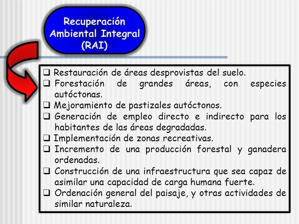 Recuperación Ambiental Integral (RAI)