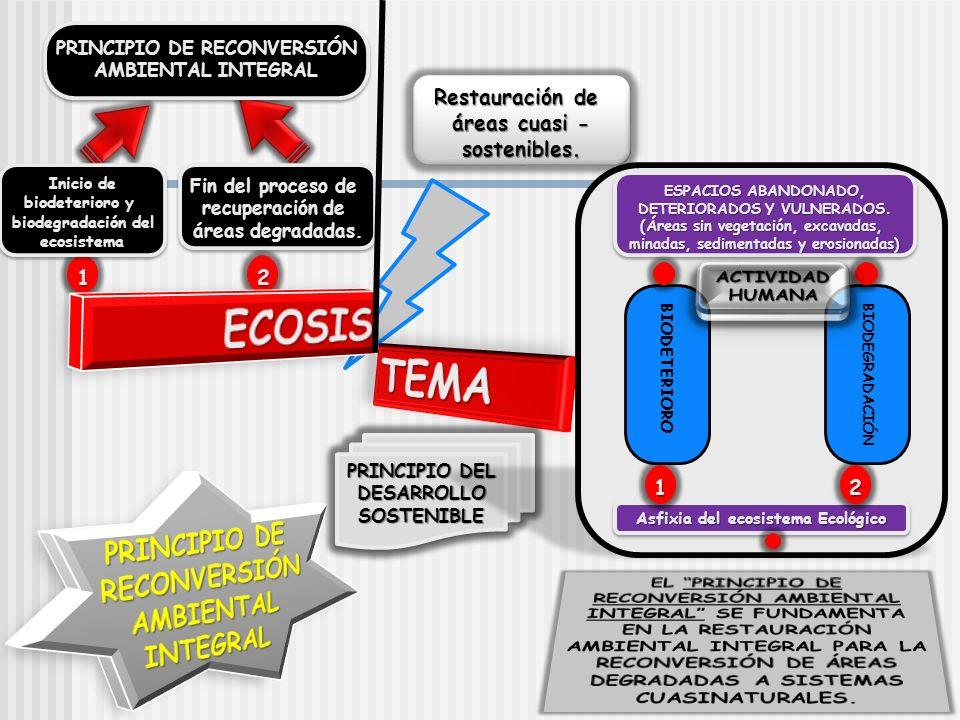 ECOSIS TEMA PRINCIPIO DE RECONVERSIÓN AMBIENTAL INTEGRAL